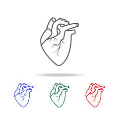 Realistic Heart icon. Elements of human body part multi colored icons. Premium quality graphic design icon. Simple icon for websites, web design, mobile app, info graphics