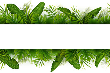 Tropical jungle background with palm trees and leaves on white background