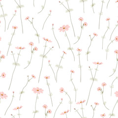 Seamless pattern with wild summer flowers on white background, editable