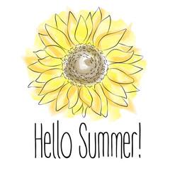 Hello Summer! Yellow sunflower Vector illustration on white background