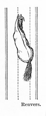 Horse's way of walking - haunches-out (from Meyers Lexikon, 1896, 13/770/771)