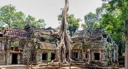 Ta Prohm Temple, Cambodia Fototapete