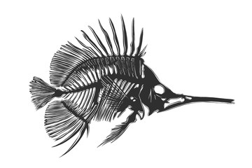Vector engraved style illustration for posters, decoration and print. Hand drawn sketch of fish bones in monochrome isolated on white background. Detailed vintage woodcut style drawing.