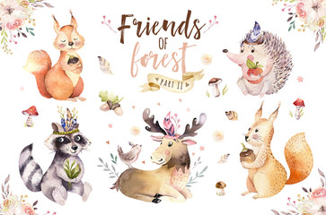 Wall Mural - Cute watercolor bohemian baby cartoon hedgehog, squirrel and moose animal for nursary, woodland isolated forest illustration for children. Bunnies animals.
