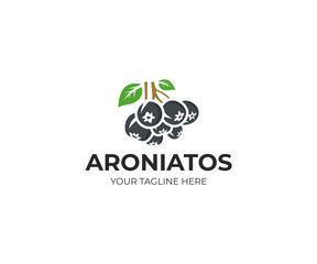 Aronia berry logo template. Chokeberry vector design, Fruit logotype