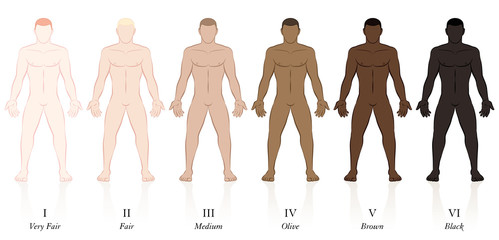 Skin types. Six men with different skin colors. Very fair, fair, medium, olive, brown and black, to determine the sun protection factor.