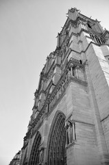 Close up of the Notre Dame Cathedral looking to the sky in black and white Portrait view