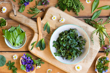 Fototapeta Wild edible spring plants on a wooden table obraz