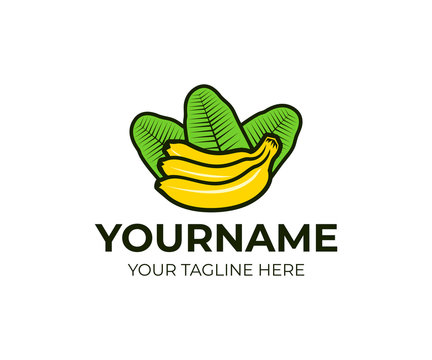Bunch of bananas with leaves, logo template. Tropical and exotic fruit, vector design. Natural ,organic and vegan food, illustration