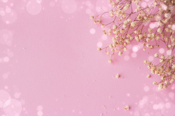 Pink background with small white flowers and bokeh, with copy space