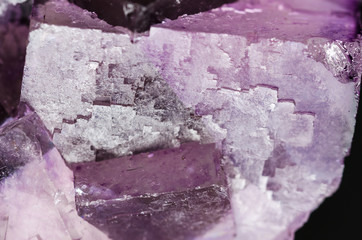 Fluorite surface closeup. Cubic crystals of fluorspar, a mineral form of calcium fluoride, CaF2. Colorful pink and purple crystal cluster. Isolated macro photo from above on black background.