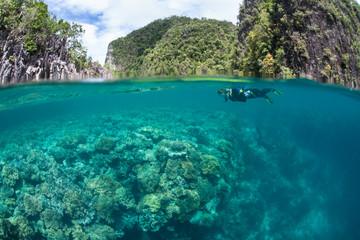 Snorkeler Exploring a Coral Reef in Raja Ampat
