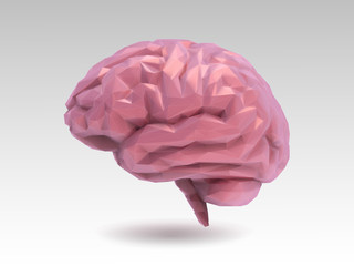 Vector low poly brain illustration in 3D style