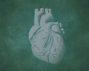 Vintage human heart illustration on green board BG