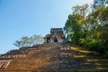 Palenque, Chiapas, Mexico: Archaeological area with ruins, temples and pyramids in the ancient city of Maya