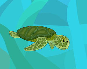 cartoon sea colorful turtle, stock vector