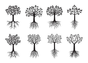 Set black Trees with Leaves and Roots. Vector Illustration.