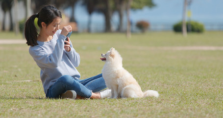 Woman taking photo on her Pomeranian dog at outdoor park