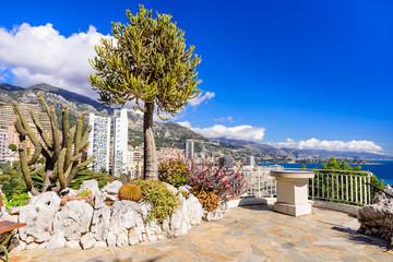Exotic garden in Monaco