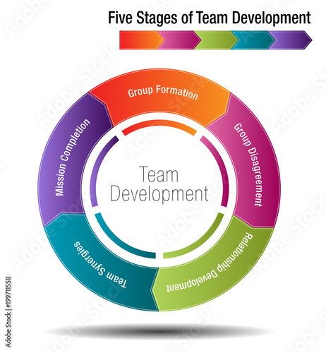the five stages of team development Identify the stage of team development that your team is at from the descriptions above now consider what you need to do to move towards the performing stage figure 1, below, will help you understand your role, and think about how you can move the team forward.