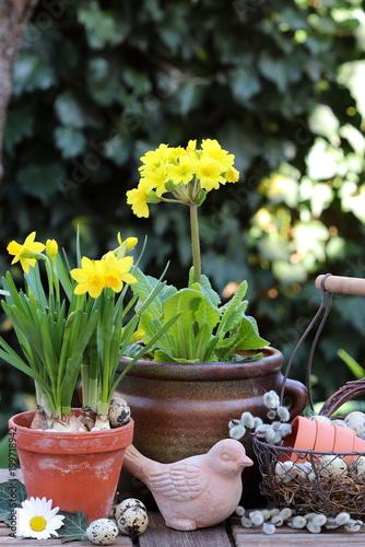 Gartendekoration Mit Blumen In Gelb Im Fruhling Stock Photo And