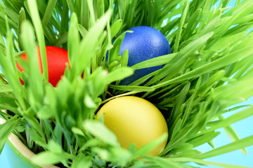 Colorful Easter eggs in the grass stock images. Easter decoration photo. Spring decoration images. Painted Easter eggs