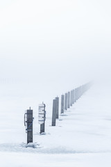 Piles stick out of a frozen lake with fog in the background.