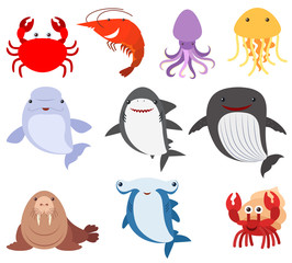 Many types of sea creatures