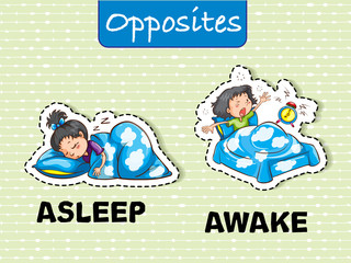 Opposite words for asleep and awake