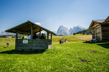 Children play on the pastures of the Alpe di Siusi, Ortisei, Dolomites, Italy