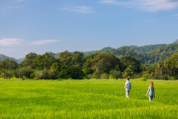Kids walking in rice field