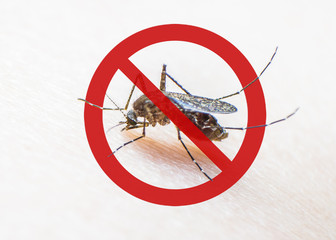 World malaria day with no mosquito sign for prevention of virus carrier insect spreading Aedes aegypti, yellow fever, dengue, chikungunya, Zika, Mayaro, Malaria, flavi epidemic disease