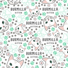Cat Breed Collection : Seamless Pattern : Vector Illustration