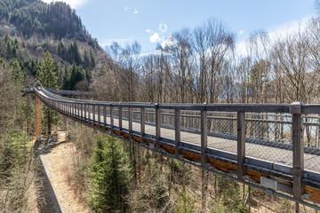 Brücken im Baumwipfelpfad im Allgäu