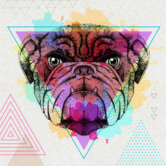 Hipster animal bulldog on artistic polygon watercolor background