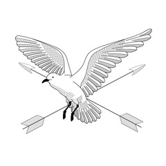 bird flying. illustration vector. hand drawing line art of animal. bird isolated line on white background. symbol of freedom. tattoo design. circle of life. with cross arrow.