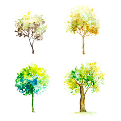 Bright colored trees. Four trees. Hand-drawn. A watercolor drawing. Close up. Isolated on white background