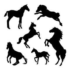 Horse silhouettes on white background