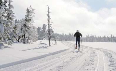 Man cross country skiing  in Norway