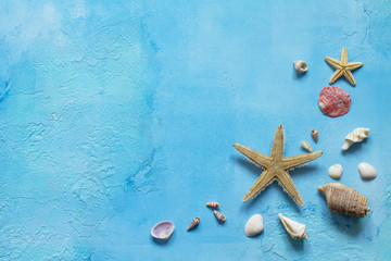 Seashells and starfish border with copy space on a blue concrete or stone background. Sea summer vacation background. Top view flat lay.