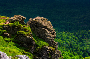 cliff in a shape of a tiger head. lovely nature scenery in summer mountains