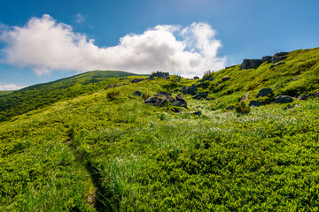 path uphill in to the cloud. lovely mountain landscape in summer. tourism and summer activities concept