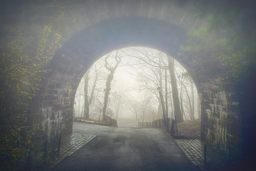 Misty Early April Morning at Fort Tryon Park