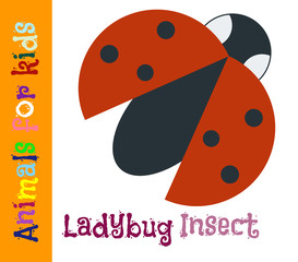 Ladybug. Insect. Animals for children. Cards for the development of the youngest children with the image of animals, birds, insects, reptiles. Vector. Color picture