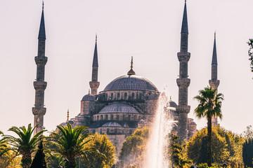 Mosquée Sultan Ahmet - Mosquée Bleu - Istanbul - Turquie