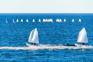 Optimist sailboat during a training