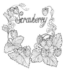 set of outline drawings of strawberries