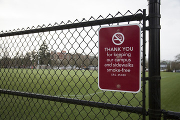 Smoke-free zone sign on chain link fence with green grass field in background