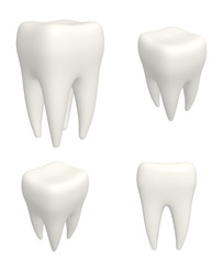 Set of human teeths 3d models. View from different angles