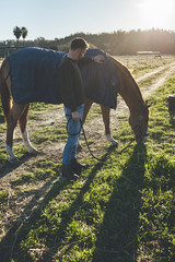 Handsome millennial horse man feeding his horse in the field at sunrise